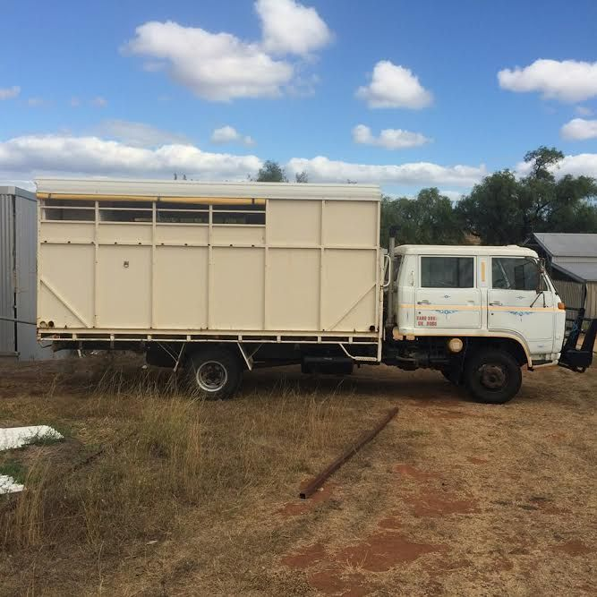 1983 Isuzu Dual Cab 5 Horse Truck Transport for sale NSW